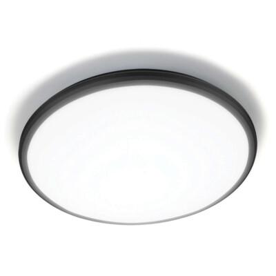 Stropna zidna svjetiljka 2605S