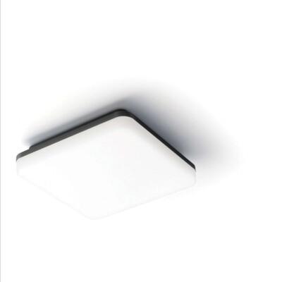 Stropna zidna svjetiljka 2605L
