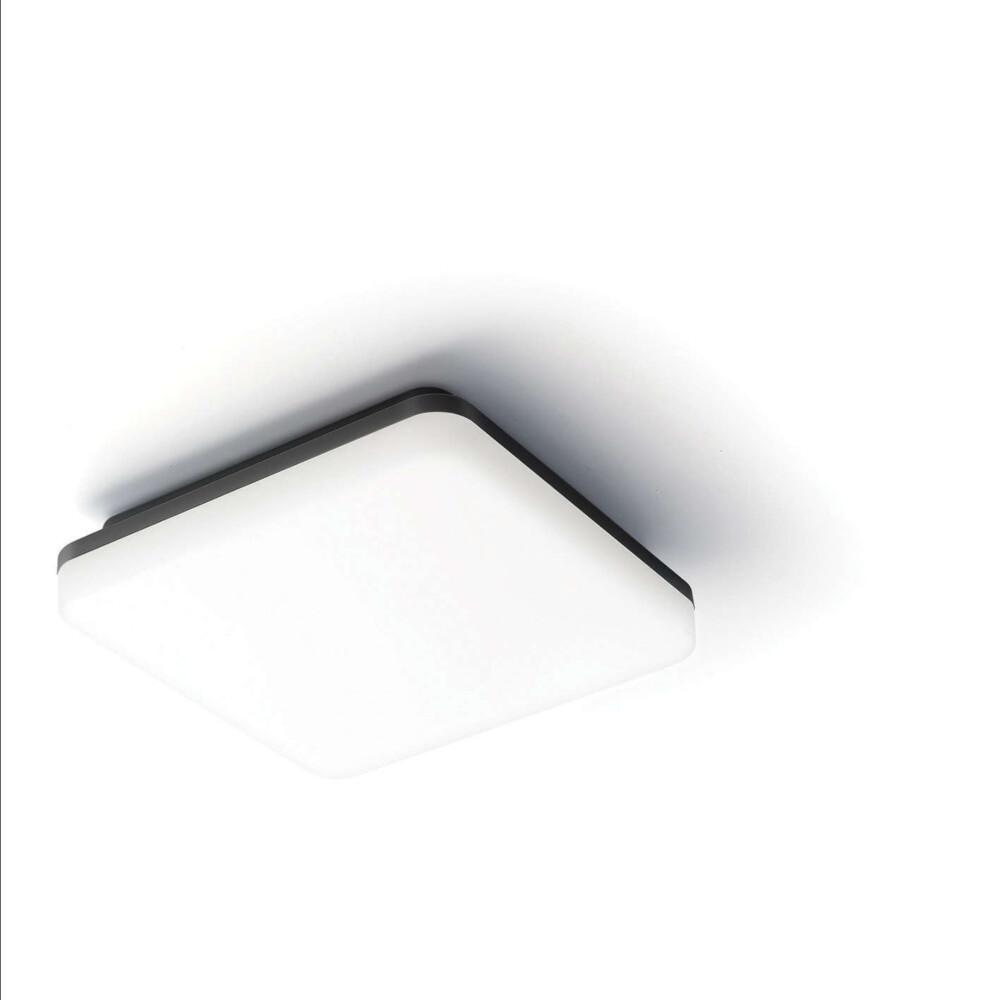 Stropna zidna svjetiljka 2601M