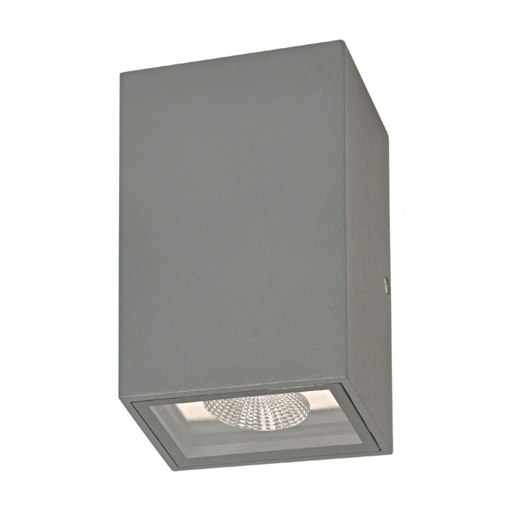 Stropna zidna svjetiljka CDR020204S