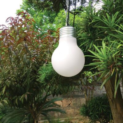 Viseća svjetiljka PFT809W